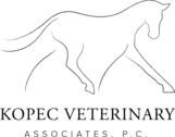 Kopec Veterinary Associates